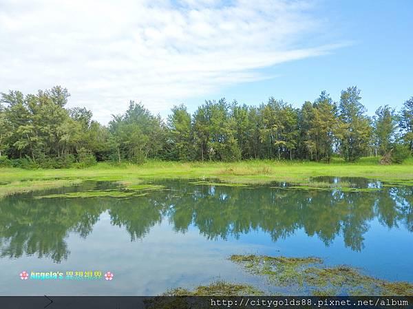 台東森林公園014.JPG
