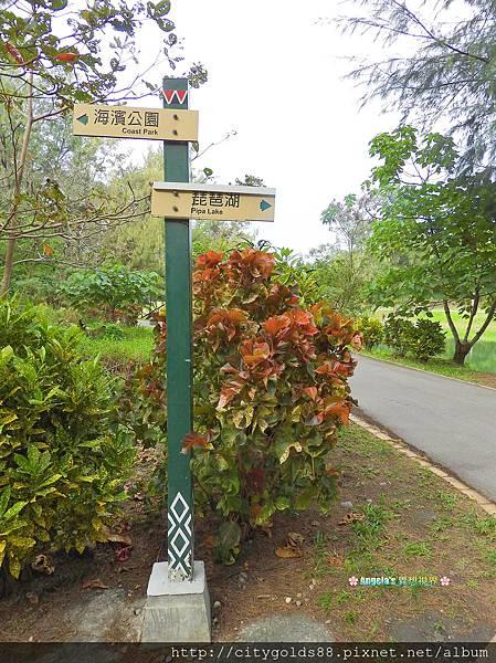 台東森林公園026.JPG