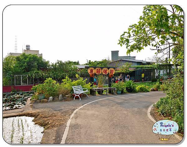 康莊農園(大王蓮)002.jpg