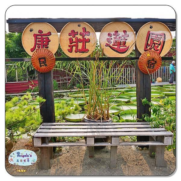 康莊農園(大王蓮)008.jpg