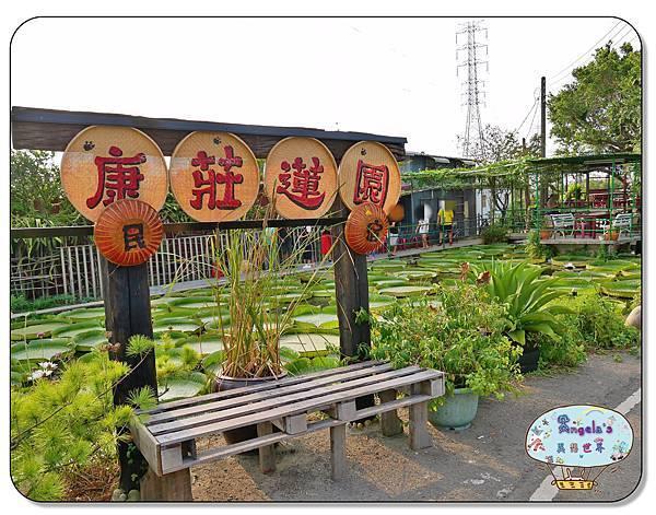 康莊農園(大王蓮)007.jpg