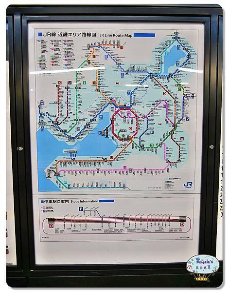 大阪城公園007.jpg