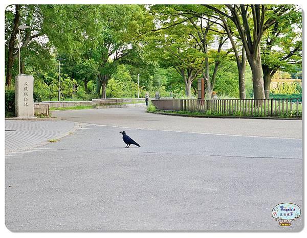 大阪城公園028.jpg