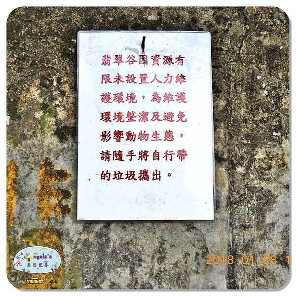(2018年花東行)花蓮翡翠谷水簾瀑布034.jpg