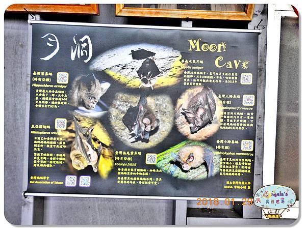 (2018年花東行)月洞風景區024.jpg
