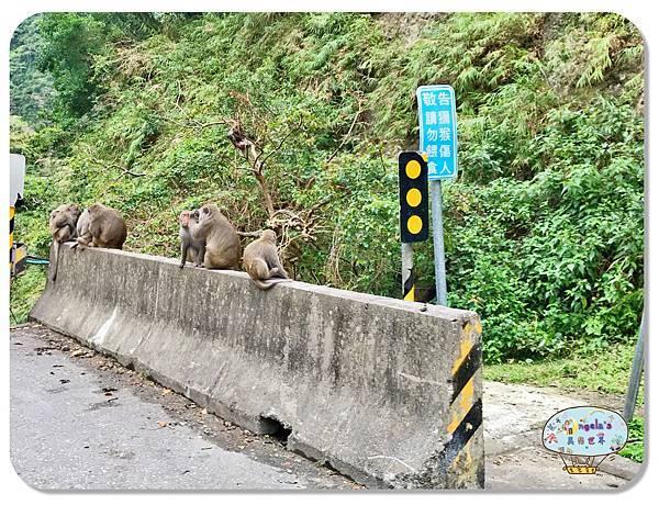 (2018年花東行)東河鄉登仙橋遊憩區017.jpg