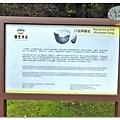 (2018年花東行)台東八仙洞遺址021.jpg