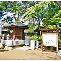 (2017年日本旅遊)東京(小江戶川越)星野山喜多院031.jpg