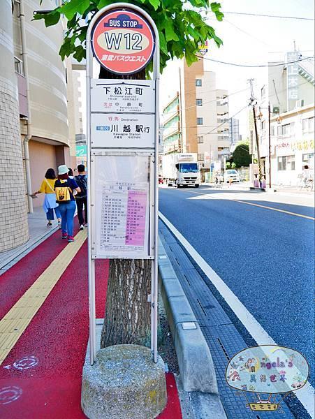 (2017年日本旅遊)東京(小江戶川越)熊野神社004.jpg