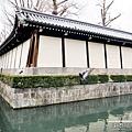(2019年日本京阪神奈)京都東本願寺007.jpg