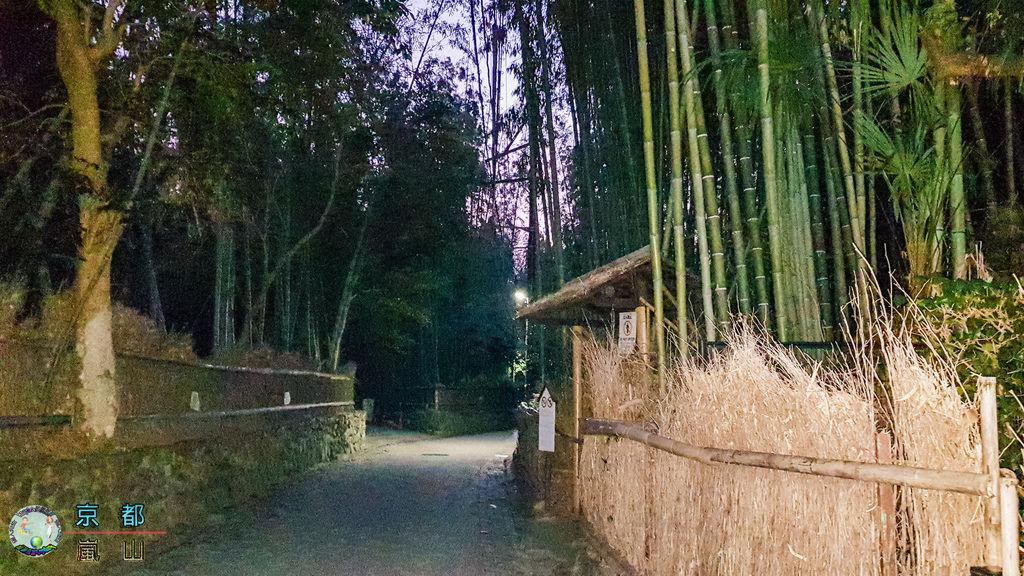 (2019年日本京阪神奈)京都(嵐山)052.jpg