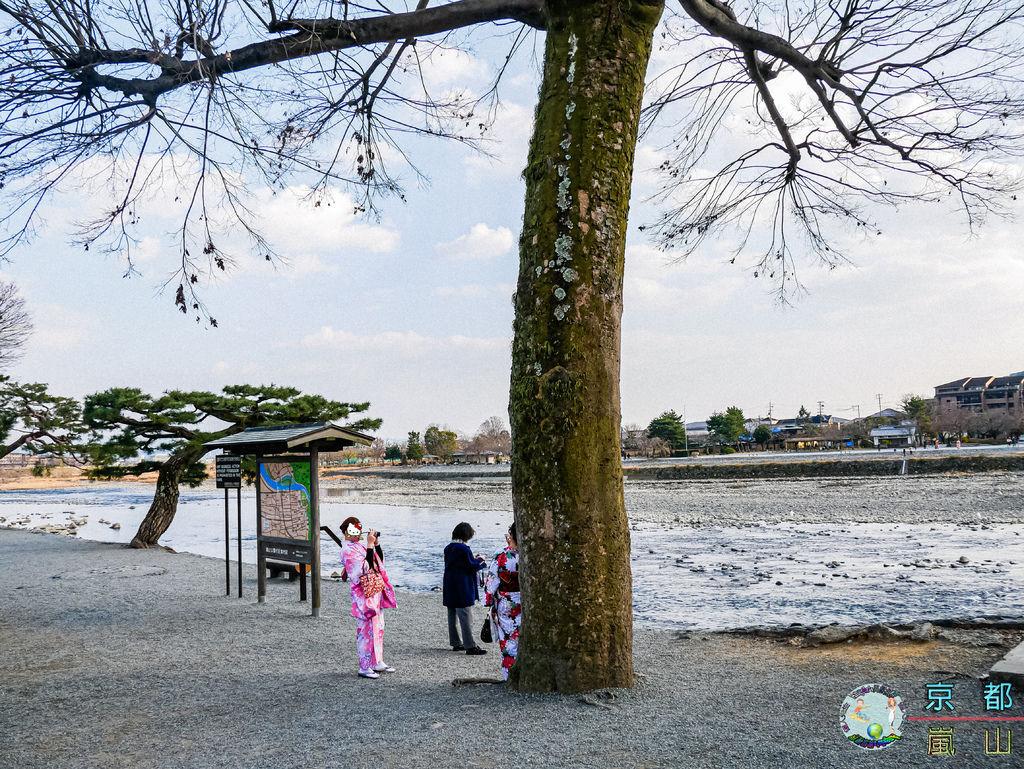 (2019年日本京阪神奈)京都(嵐山)049.jpg