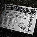 嘉明湖-20130808-122443.JPG