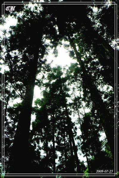 2009_0725_120746_blog.jpg