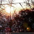 2009_0128_173940_blog.jpg