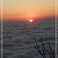 2009_0128_174637_blog.jpg