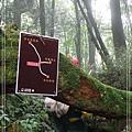 2009_0704_085128_blog.jpg