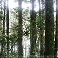 2009_0704_100832_blog.jpg