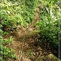 2009_0704_154556_blog.jpg