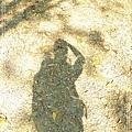 2009_0829_083955_blog.jpg