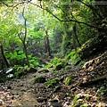 2009_0829_084631_blog.jpg