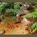 P6070103_blog.jpg