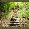 P6070107_blog.jpg