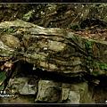 2010_0327_112819_blog.jpg