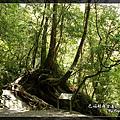 2010_0501_104715_blog.jpg