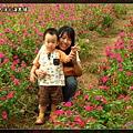 2010_1002_135349_blog.jpg