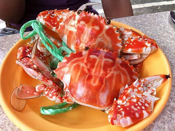 我愛螃蟹,螃蟹愛我