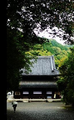 泉湧寺.jpg
