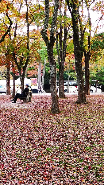 品京都02.jpg