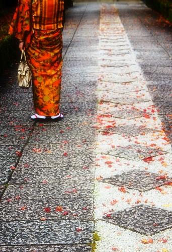 京都和服.jpg