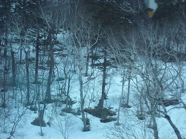第二天-小樽出發前往十勝幕別溫泉飯店途中看到山上的雪景(1).jpg