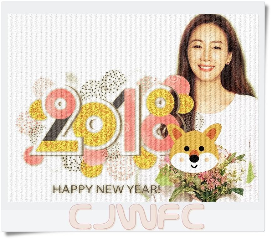 2018-NEWYEAR-