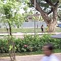 07_2008042701_街頭景色.JPG