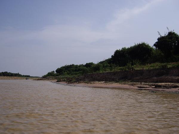 57_2008042707_洞里薩湖_黃澄澄的湖水.JPG
