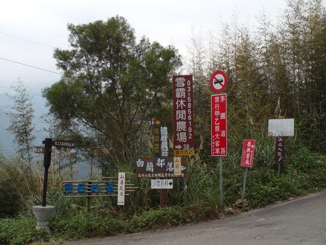 新竹縣 五峰鄉 五指山 (26).JPG