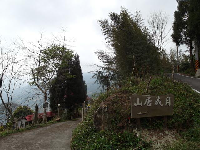 新竹縣 五峰鄉 五指山 (64).JPG