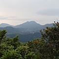 大崙頭山 (75).JPG