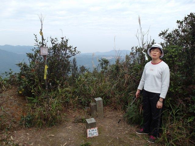 友蚋山 (91).JPG