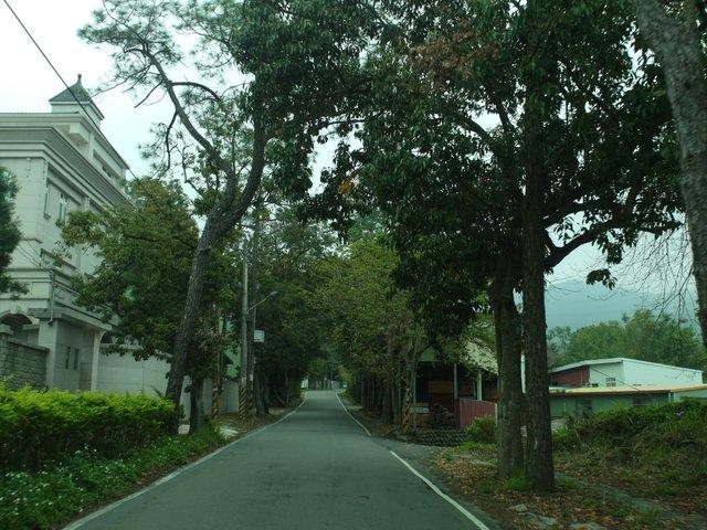飛鳳山 (5).JPG