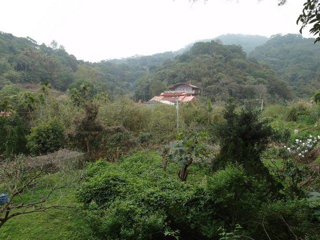 飛鳳山 (14).JPG