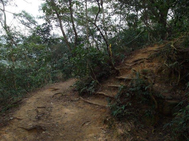 飛鳳山 (17).JPG
