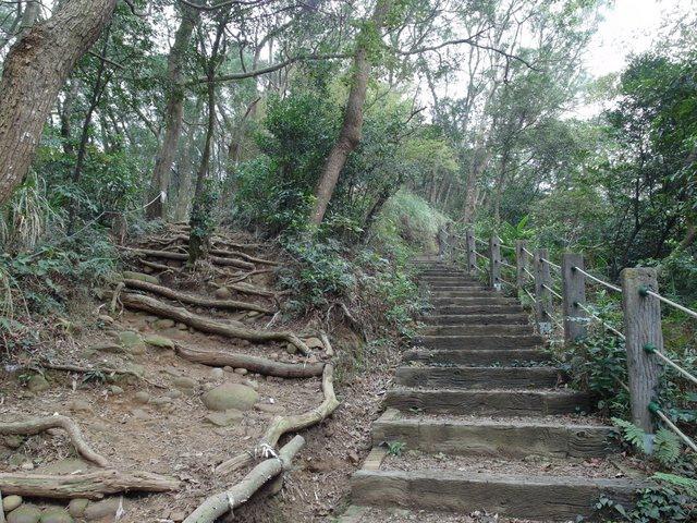 飛鳳山 (25).JPG