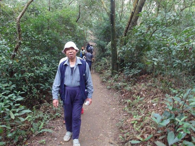 飛鳳山 (35).JPG