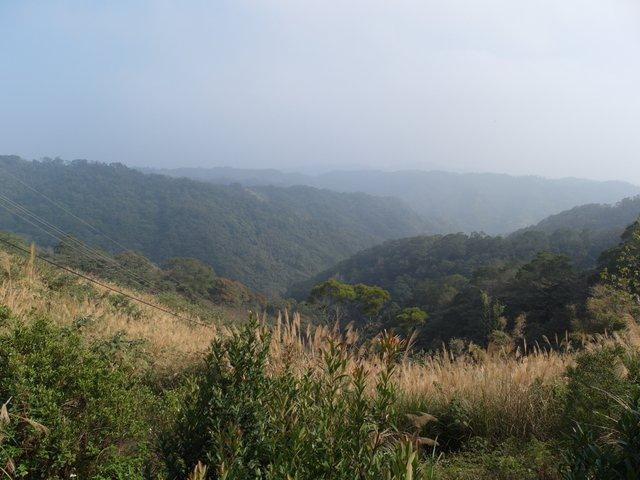 飛鳳山 (86).JPG