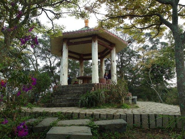 飛鳳山 (101).JPG