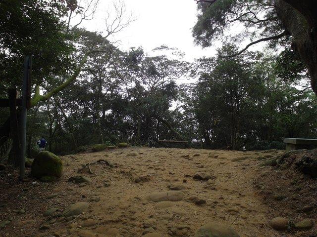 飛鳳山 (104).JPG